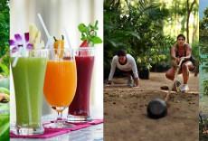 Основные wellness-тенденции в 2015 году
