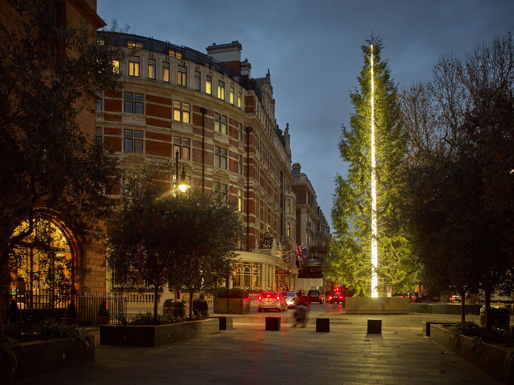 The Connaught Christmas Tree-2016
