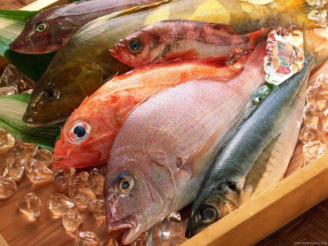 fresh fish 2014 trend