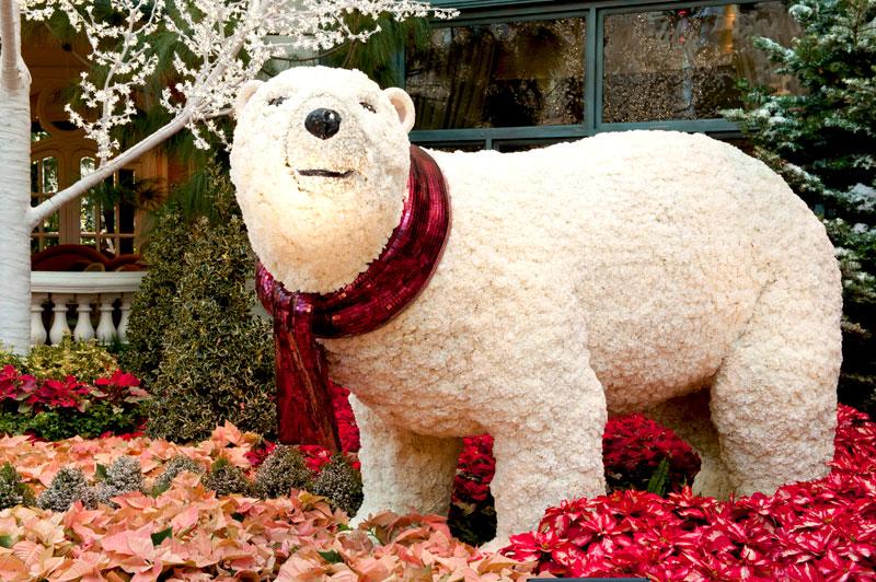 Праздничный медведь в отеле Belagio