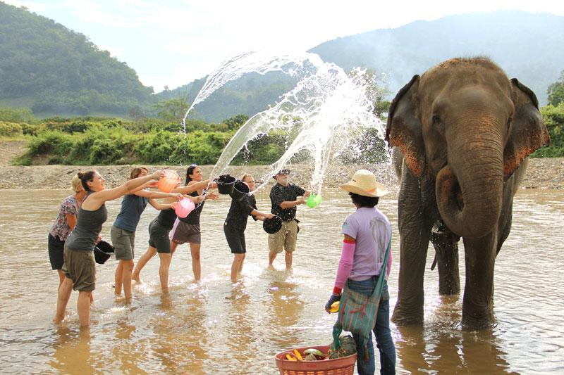 Участники движения Pravassa Wellness Travel