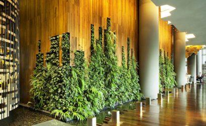 Экологичные тенденции в отелях